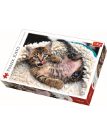 Cheerful kitten / Trefl - 1000 pcs - Legpuzzel
