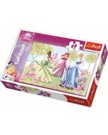 Stroll through the garden / Disney Princess - 60 pcs - Legpuzzel