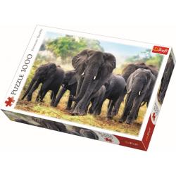African elephants - 1000 stukjes - Legpuzzel
