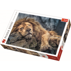 Sleeping lion / Trefl - 1000 pcs - Legpuzzel
