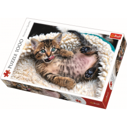 Cheerful kitten  - 1000 stukjes - Legpuzzel