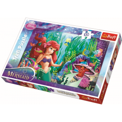 Hide and seek / Disney Princess - 100 pcs - Legpuzzel