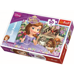 30 pcs - Roses / Disney Sofia the First - Legpuzzel