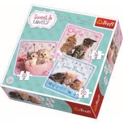 3 in 1 - Sweet Kittens - Puzzel