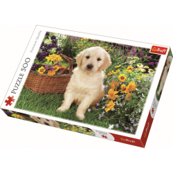 Puppy Labrador in the garden / Trefl - 500 pcs - Legpuzzel