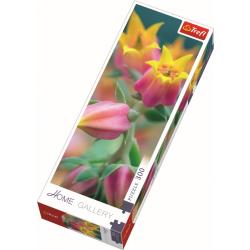 Home Gallery - Bloemen in bloei, 300 stukjes - Puzzel