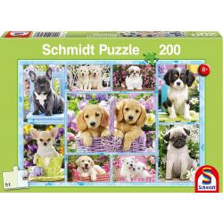 Puppies, 200 pcs