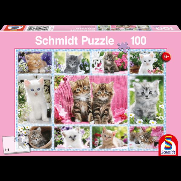 Kittens 100 pcs